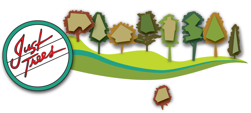 Just Trees | The Perfect Trees for Fort Collins